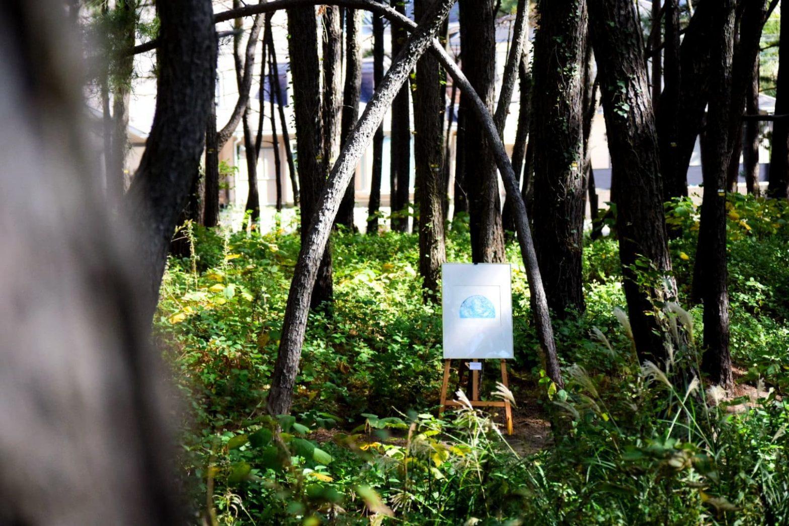 「森の美術館」にご参加の皆様へ
